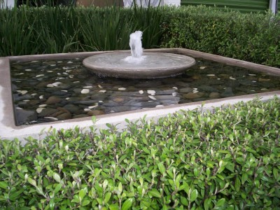 Flat Bowl water feature