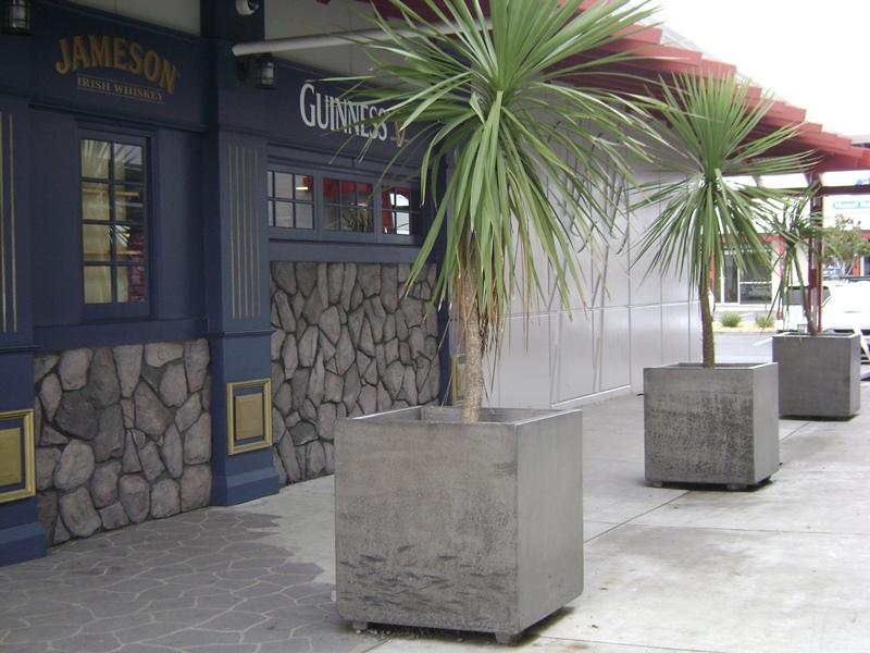 Large Concrete Planters Scattered Throughout The Centre Provide For Some  Greenery.