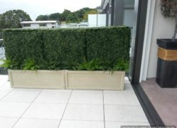 Choose Sanstone NZ for all your indent planter needs. We manufacture them in NZ.
