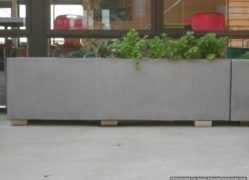 Choose Sanstone NZ for all your trough planter needs. We manufacture locally.