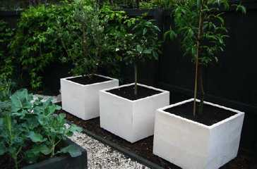 Captivating Quality Super Lightweight Planters