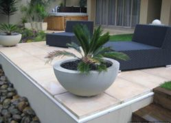 Choose Sanstone NZ for all your round planter needs. We manufacture them locally.