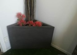 Choose Sanstone NZ who manufactures locally corner concrete planters.